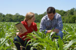 Agronomic Services
