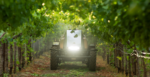 mini guss autonomous sprayer in orchard